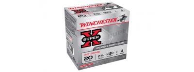 WIN-X204